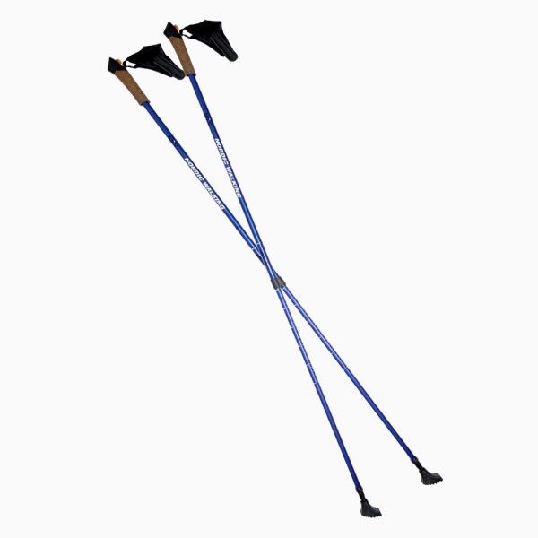 Палки для нордичної ходьби NW 607