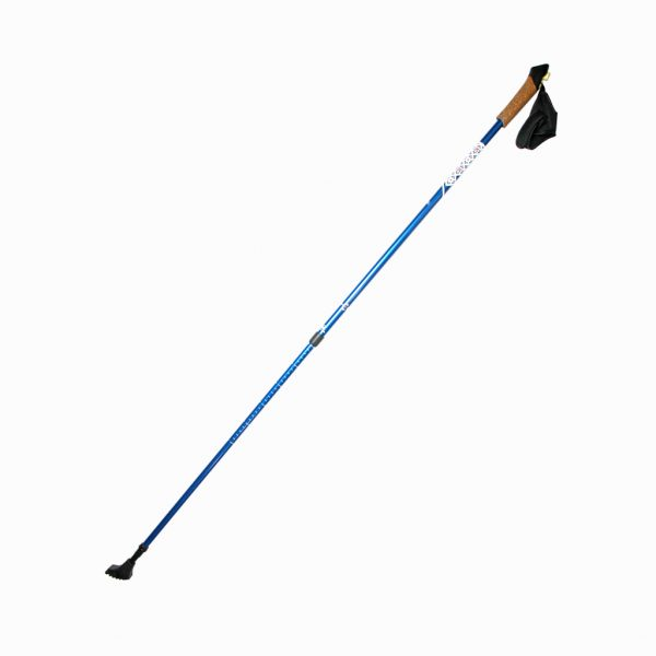 Палки для скандинавської ходьби RE:FLEX  NW 201 сині