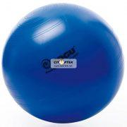 М'яч для фітнесу TOGU Powerball Premium ABS sport & wellness 75 см
